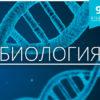 Bio-9